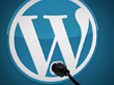 WordPress - Essential Plugins